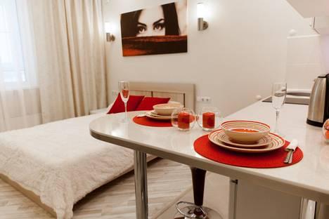 Сдается 1-комнатная квартира посуточнов Нижнем Новгороде, улица Бурнаковская 93.