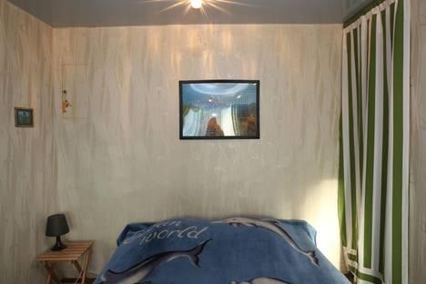 Сдается 1-комнатная квартира посуточно в Дзержинске, ул. Чапаева, 2.