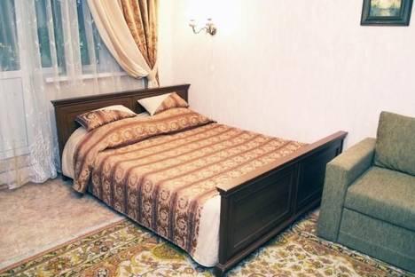 Сдается 1-комнатная квартира посуточно в Киеве, ул. Луначарского, 14.