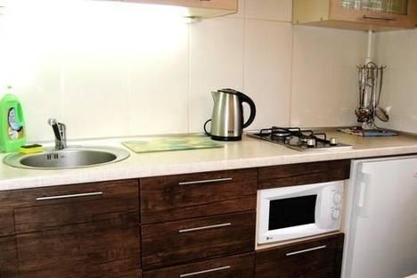 Сдается 1-комнатная квартира посуточно в Кременчуге, ул. Красина, 101.
