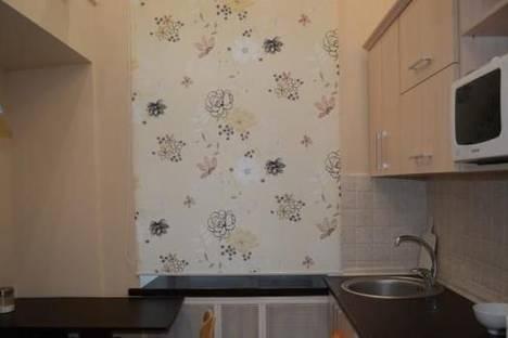 Сдается 1-комнатная квартира посуточно в Львове, ул. Коперника, 22.