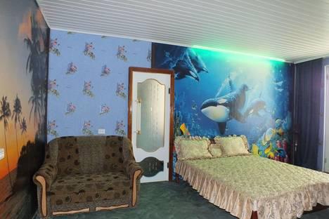 Сдается 2-комнатная квартира посуточно в Белой Церкви, Шолом-Алейхема, 35.