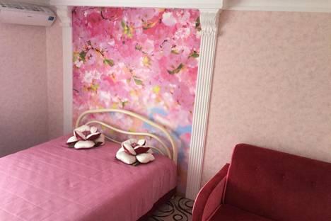 Сдается 1-комнатная квартира посуточно в Ставрополе, Ленина 243.