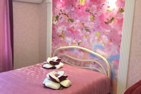 Сдается 2-комнатная квартира посуточно в Ставрополе, Ленина 243.