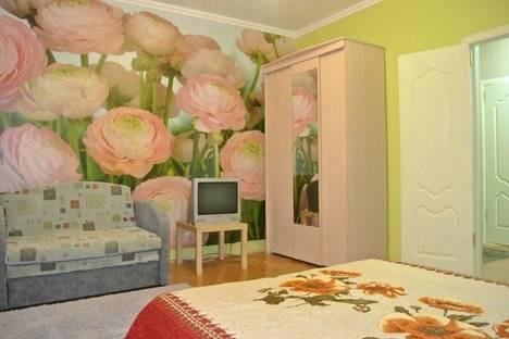 Сдается 1-комнатная квартира посуточно в Нижнекамске, химиков 90.
