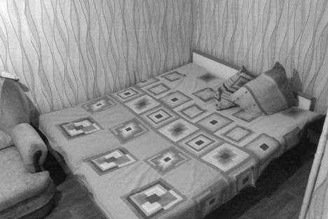 Сдается 1-комнатная квартира посуточно, Московский 36.