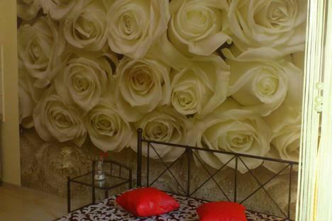 Сдается 1-комнатная квартира посуточно в Береговом, Ялта, Кастрополь, ул.Кипарисная, 33б.