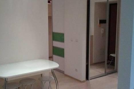 Сдается 1-комнатная квартира посуточнов Тюмени, эрвье 24.
