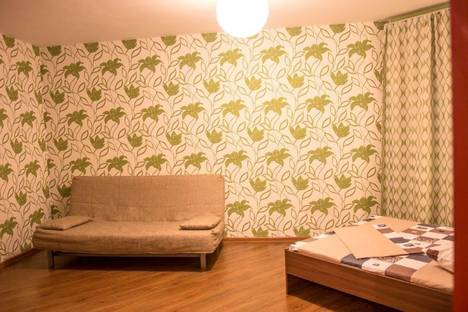Сдается 1-комнатная квартира посуточно в Новосибирске, ул. Чехова, 111.