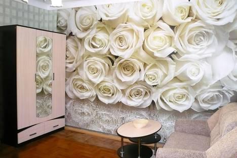 Сдается 2-комнатная квартира посуточно в Ессентуках, ул. Урицкого, 3.