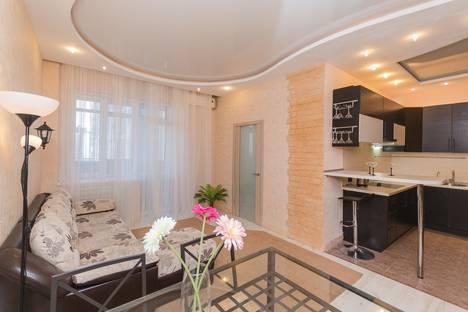 Сдается 2-комнатная квартира посуточно в Нижнем Новгороде, ул. Белинского, 11/66.