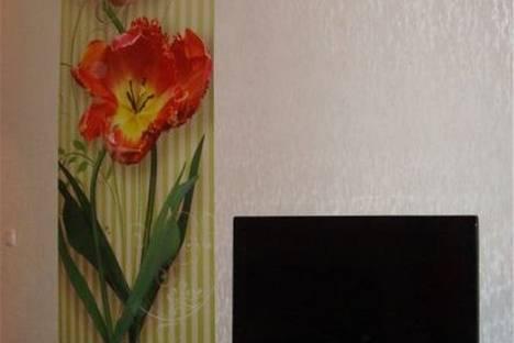 Сдается 1-комнатная квартира посуточнов Омске, улица Дмитриева дом 13/1.