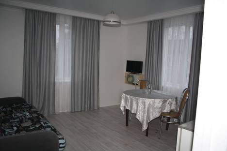 Сдается 2-комнатная квартира посуточно в Пушкине, Колпинское шоссе, 16.