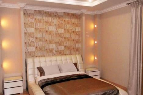 Сдается 1-комнатная квартира посуточнов Андреевке, Сенявина улица, д. 2.