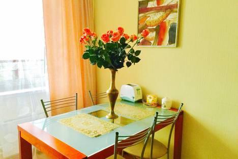 Сдается 1-комнатная квартира посуточно в Пскове, михайловская, 1.