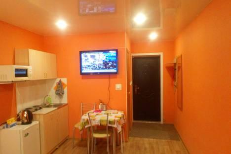 Сдается 1-комнатная квартира посуточно в Новосибирске, улица Блюхера, 55.