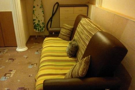 Сдается 1-комнатная квартира посуточнов Санкт-Петербурге, 10-я Советская улица, 21.
