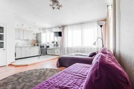 Сдается 1-комнатная квартира посуточнов Пушкине, Московский проспект, 224, кв.118.