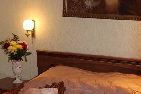Сдается 2-комнатная квартира посуточнов Кузнецке, ул. Радищева, 12.