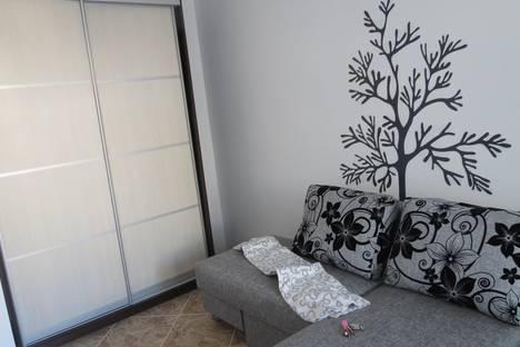 Сдается 1-комнатная квартира посуточнов Пскове, ул. Лагерная, 5а.