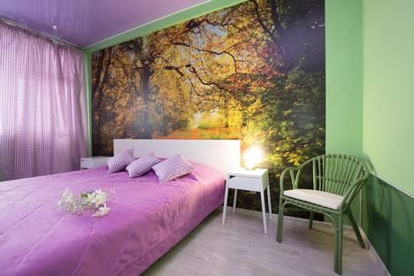 Сдается 1-комнатная квартира посуточнов Екатеринбурге, Белинского 177а.