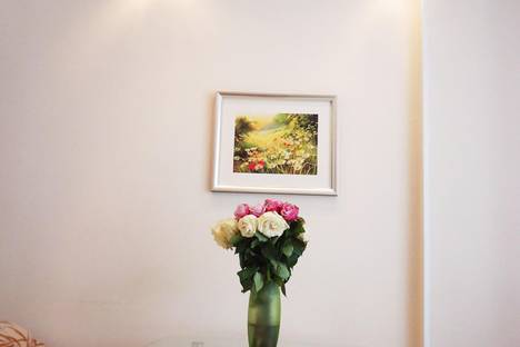Сдается 1-комнатная квартира посуточнов Санкт-Петербурге, проспект Авиаконструкторов, 2.