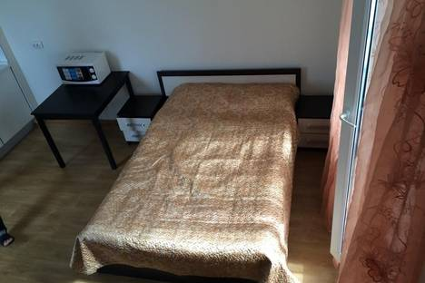 Сдается 1-комнатная квартира посуточнов Санкт-Петербурге, Лабораторный 20 к 3.