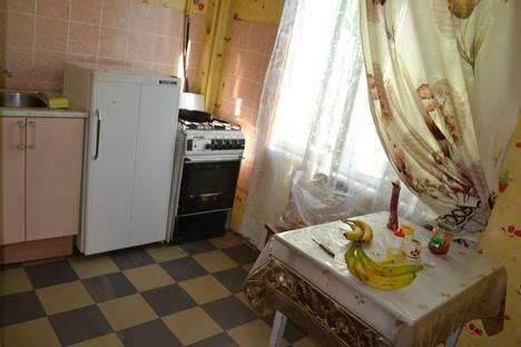 Сдается 2-комнатная квартира посуточнов Санкт-Петербурге, Новоселов 5.