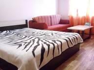 Сдается посуточно 1-комнатная квартира в Нижнем Новгороде. 0 м кв. Волжская набережная, 15