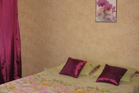 Сдается 1-комнатная квартира посуточнов Пушкине, Полоцкая 4/1.