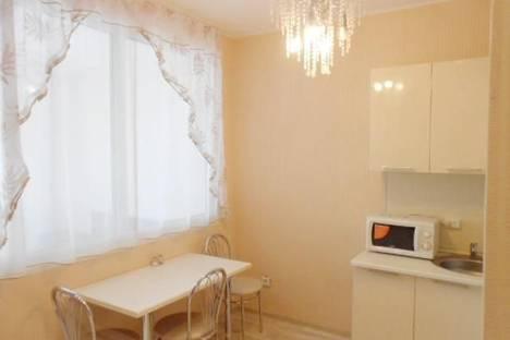 Сдается 1-комнатная квартира посуточнов Железнодорожном, деревня Павлино, 69.