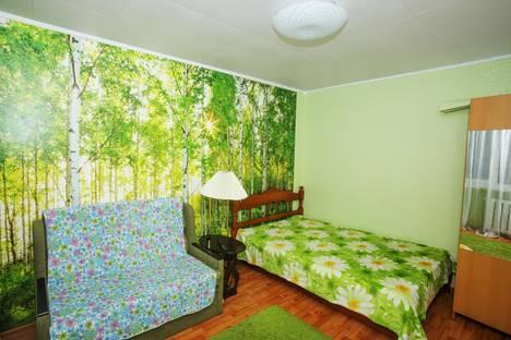 Сдается 1-комнатная квартира посуточно в Нижнем Новгороде, Народная, 42.