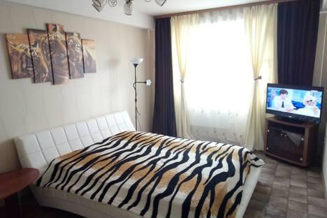Сдается 2-комнатная квартира посуточно в Нижнем Новгороде, Мичурина 1.