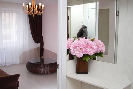 Сдается 1-комнатная квартира посуточно в Витебске, Богатырева 29.