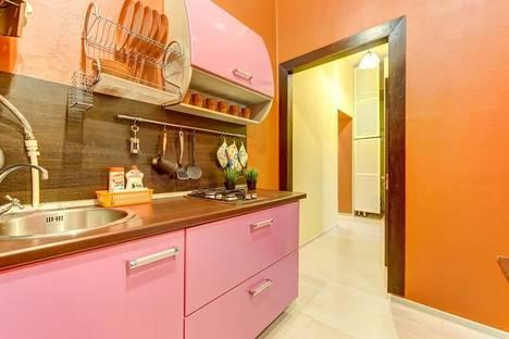 Сдается 2-комнатная квартира посуточно в Санкт-Петербурге, Лиговский проспект, 84/2Б.