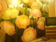 Сдается посуточно 1-комнатная квартира в Новомосковске. 0 м кв. Рязанское шоссе д 9