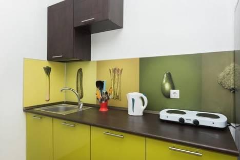 Сдается 1-комнатная квартира посуточнов Екатеринбурге, Мичурина, 132.