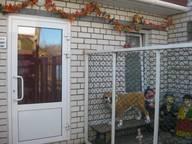 Сдается посуточно коттедж в Бору. 55 м кв. ул.Свободы 30