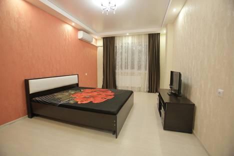 Сдается 1-комнатная квартира посуточно в Воронеже, Урицкого, 157.