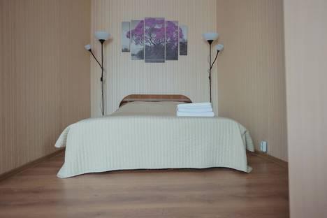 Сдается 1-комнатная квартира посуточно в Санкт-Петербурге, Московский проспект 224.