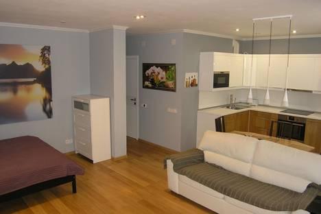 Сдается 1-комнатная квартира посуточно в Нахабине, ул. Панфилова, 27.