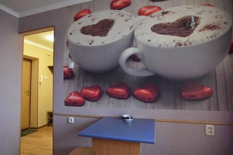 Сдается 1-комнатная квартира посуточнов Пензе, Луначарского 44.
