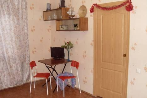 Сдается 1-комнатная квартира посуточнов Санкт-Петербурге, ул. Вавиловых, 13, корп.4.