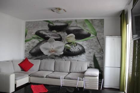 Сдается 2-комнатная квартира посуточно в Абакане, Торосова, 8а.