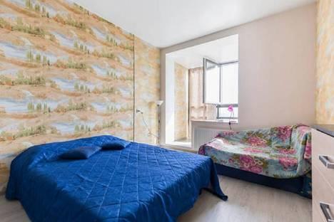 Сдается 1-комнатная квартира посуточно, рыбацкий проспект 18к2.