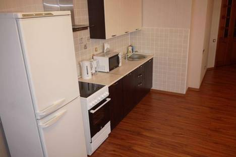 Сдается 1-комнатная квартира посуточно в Санкт-Петербурге, Ушинского, 33 к.3.