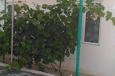 Сдается коттедж посуточно в Судаке, Чобан-Заде,4.