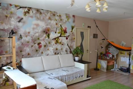 Сдается 1-комнатная квартира посуточнов Перми, ул. Крисанова, 20А.