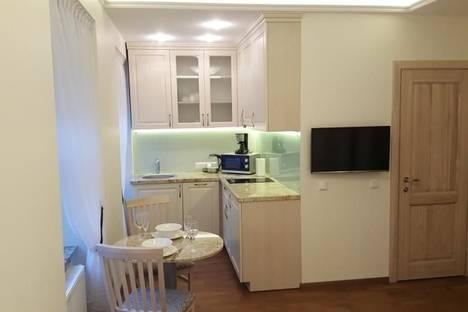 Сдается 1-комнатная квартира посуточно в Вильнюсе, Pylimo, 36.
