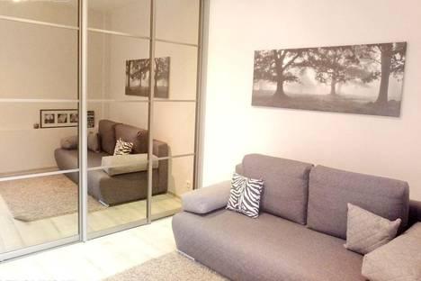 Сдается 2-комнатная квартира посуточнов Вильнюсе, Karmelitu, 42.